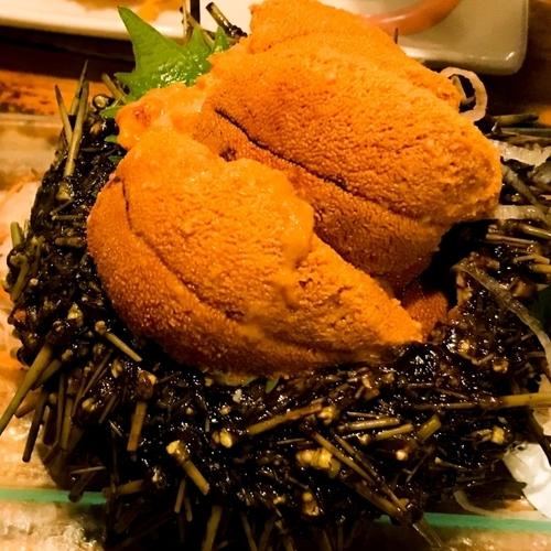 ウニ(海胆|海栗)が一番美味しい旬はいつでしょうか?